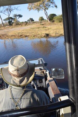 Ảnh về Moremi Game Reserve