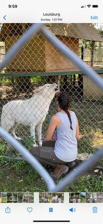 """Louisburg, Канзас: Carrie and friend leading a group """"howling session."""""""