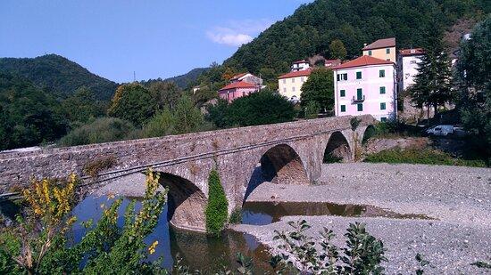 Montebruno