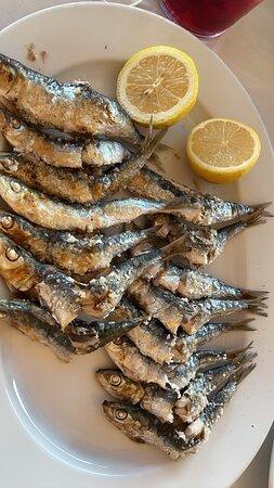 Espero de sardinas exquisitas