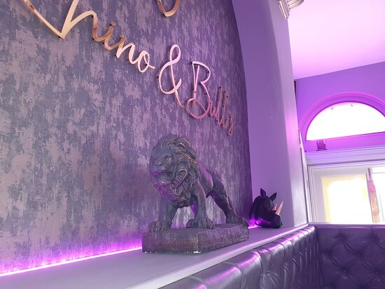 Rhino & Bull's