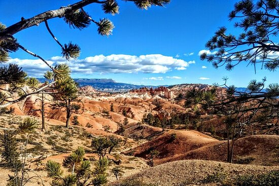 Scenic Tour of Bryce Canyon