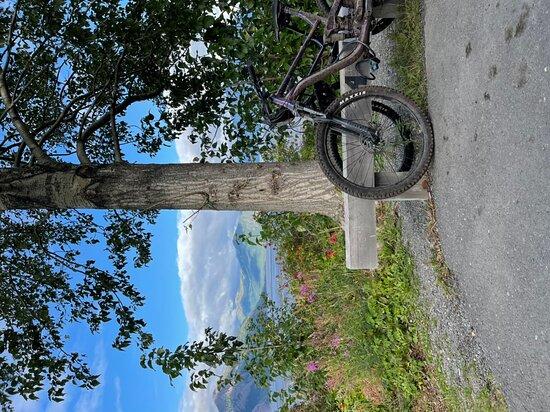 Bike Cooper Landing