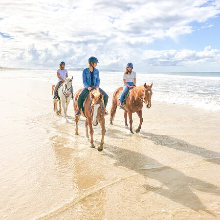 Noosa, Australia: Beach Rides