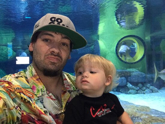 Had amazing time at this aquarium my little kiddo just pointed and smiled  can't ask for much more then that if your in the area you most go