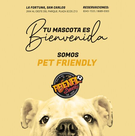 La Fortuna de San Carlos, Costa Rica: ¡Tu mascota es bienvenida! Así es, en el Arenal Sport Club somos Pet Friendly.