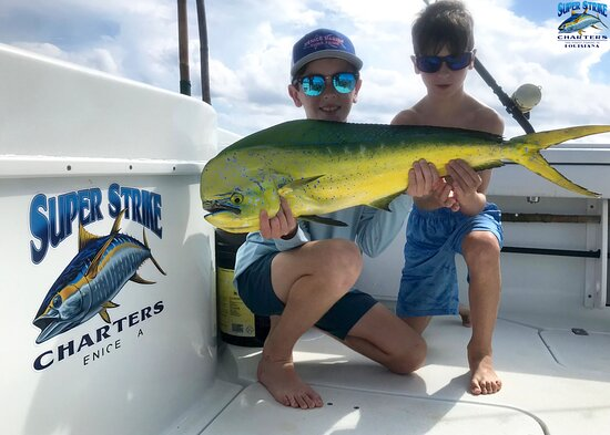 Anyone can become a fisherman by taking one step onto our boats! 🚤🎣  Make your dreams a reality by BOOKING with US TODAY!  📱Call  (985) 640-0772 or visit www.superstrikecharters.com for more information!