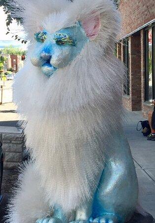 Catskill照片