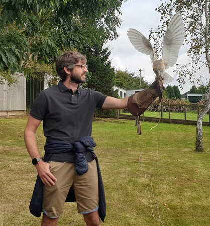 A brilliant introduction to Falconry.