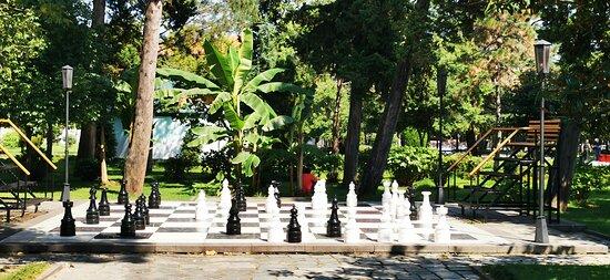 В шахматном клубе можно поиграть в нормальные шахматы, а можно повыпендриваться и сыграть в такие...