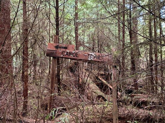 Haida Canoe Trailhead marker