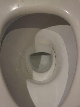 Mouldy toilet bowl