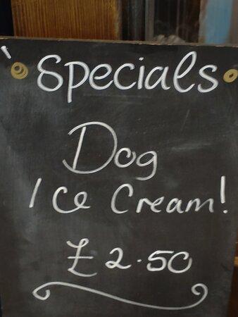 "They have ""dog ice cream."""