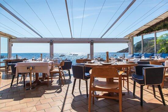 Chez Camille - Bonne Terrasse - Ramatuelle - Restaurant de Poissons avec Vue Mer - La Fameuse Bouillabaisse de Mr Bérenguier