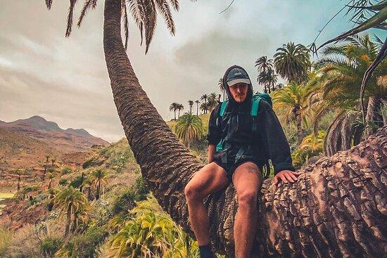 Gran Canaria: The Red Canyon Tour