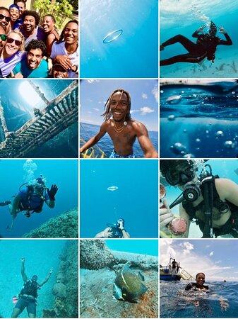 Collage of pics