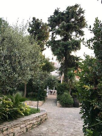 vista del giardino