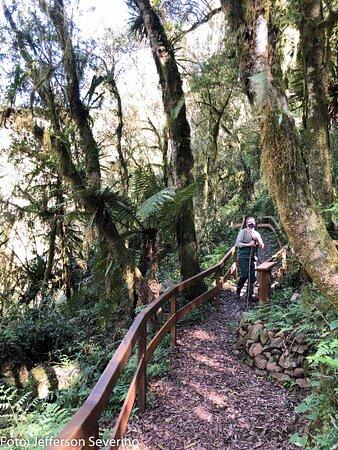 Foot of Cascata Explorer - By Brocker Turismo照片