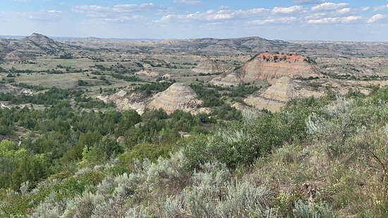 The Painted Canyon from above