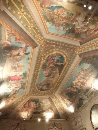 Soffitti di alcune stanze del Palazzo