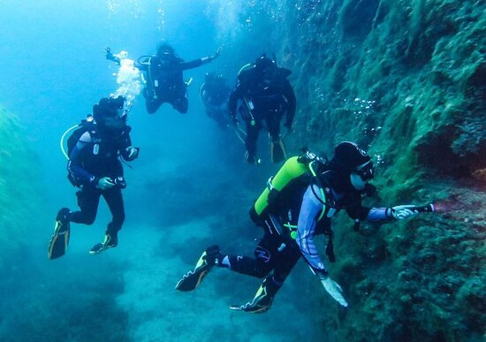 Excellent diving and the instructors are amazing