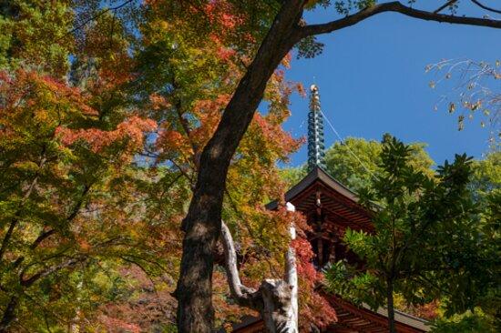 温泉寺 - Ảnh của Kamisuwa Onsen Shinyu, Suwa - Tripadvisor