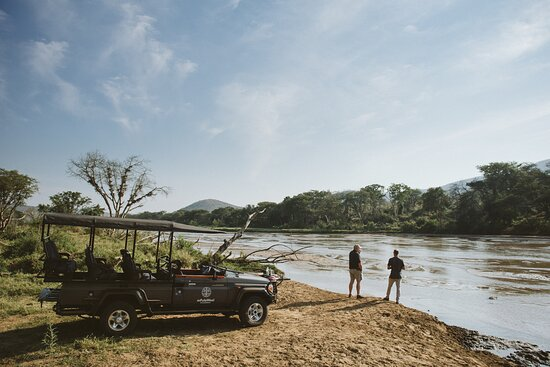 Game drive, stretch your legs