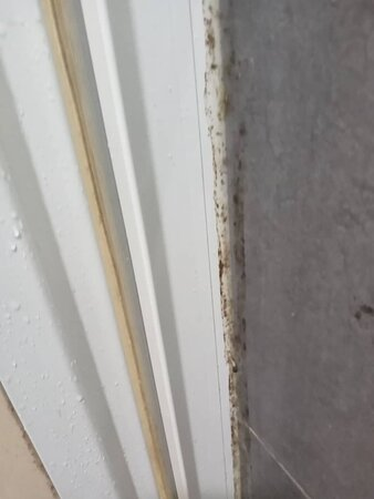 Bathroom glass door silicon dirty, door cover not washed and dirty all area