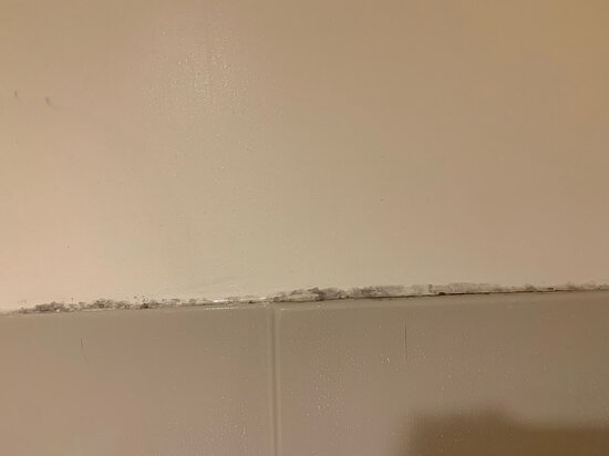 possible mold on top of shower surround