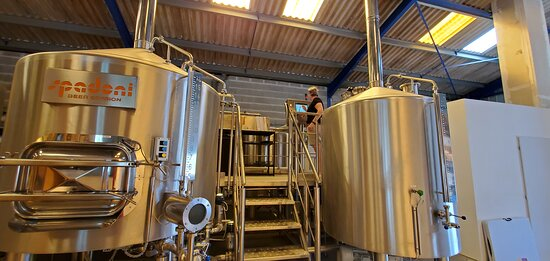 Brewing - brassage