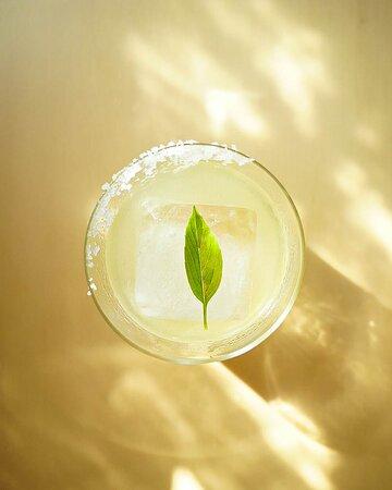 Margarita regular