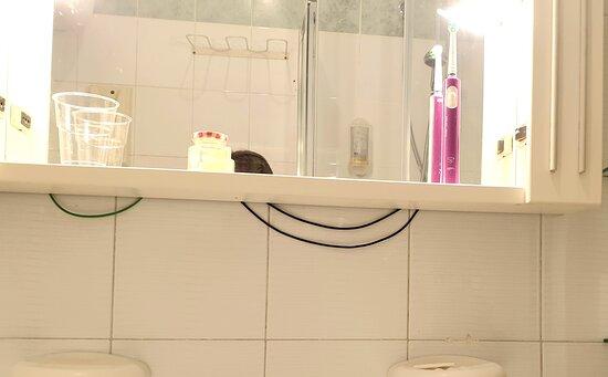 Son cables de la luz del espejo del baño.