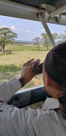 1 Day Lake Nakuru: binoculars supplied by driver