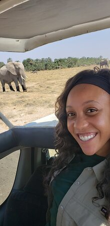 1 Day Lake Nakuru: this elephant walked right past our vehicle.