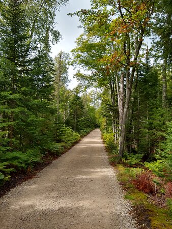 Trail Leading to Au Sable Light Station