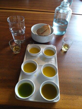 Degustação de azeites no final da visita guiada