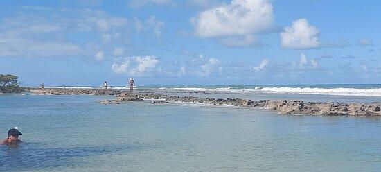 Recife de Praia dos Carneiros
