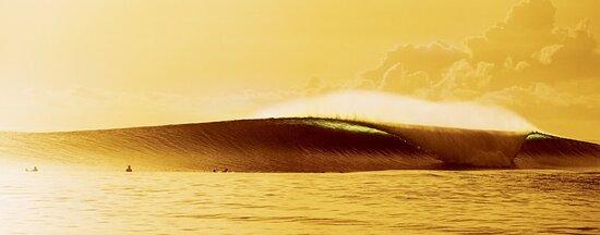 Истон, Пенсильвания: Wave
