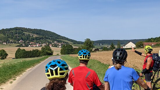 Private excursion to Côte de Beaune and Côte de Nuits (full day): on the way to Abbaye Saint Vivant!
