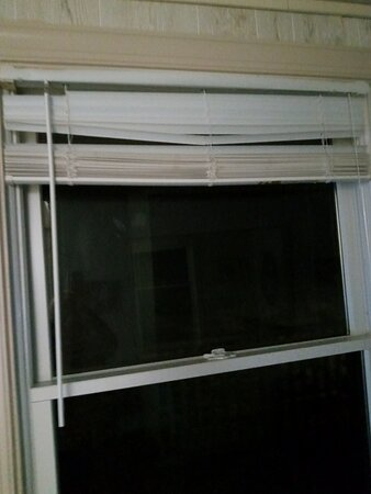 Livingroom blinds were in very bad condition and filthy!