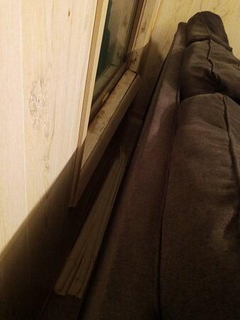 Livingroom blind on the floor behind the couch broken. Wood around window was very moldy and smelled bad in that area