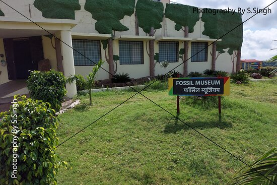 The Fossil Museum , Dino Adventure Park and fossils museum , Dhar-Mandav Rd, Mandu , M.P., India