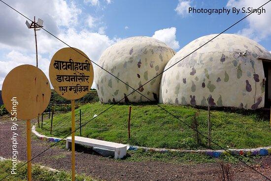 The Egg Fossil Museum , Dino Adventure Park and fossils museum , Dhar-Mandav Rd, Mandu , M.P., India
