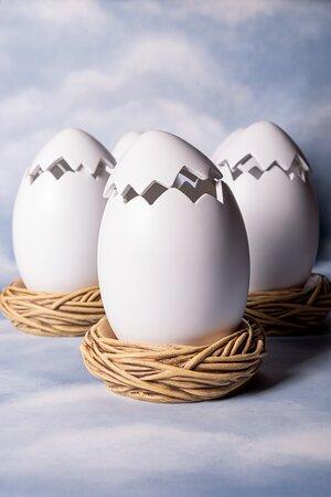 ¿Qué se esconde en el interior de estos huevos?