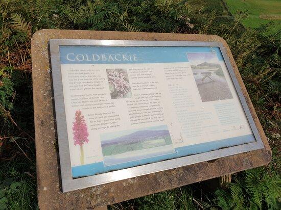 Coldbackie Beach