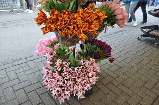 Ospita il mercato dei fiori