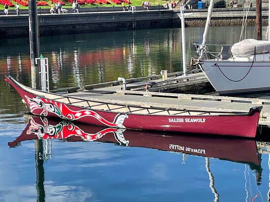 Canoe in Harbour