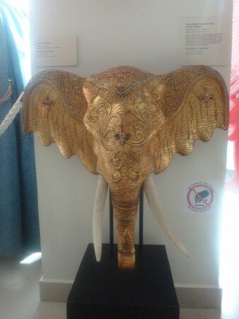 Экспонат Морского выставочного центра в Светлогорске