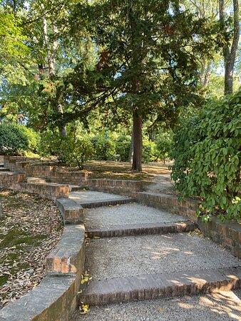 Papadopoli Park
