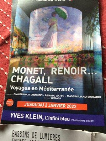 Μπορντό, Γαλλία: Petit document explicatif à l'entrée de l'expo, ainsi que mon ticket d'entrée .